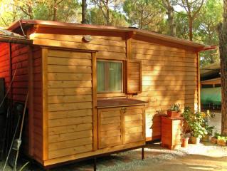Case mobili preingressi roulotte casette in legno for Case modello artigiano